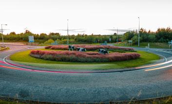 Landscape Architect - Moorepark Roundabout